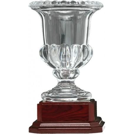 CUPS M1 COPA CRIST HQ 23CM